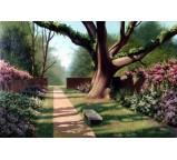 Garden 00001
