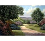 Garden 00002