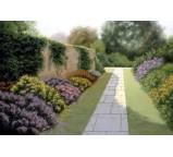 Garden 00006