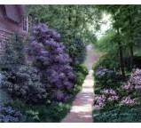 Garden 00008