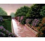 Garden 00011