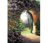 Garden 00012