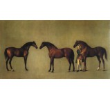 Whistlejacket & Other Stallions