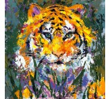 Portrait of the Tiger