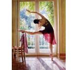 Ballet 0028